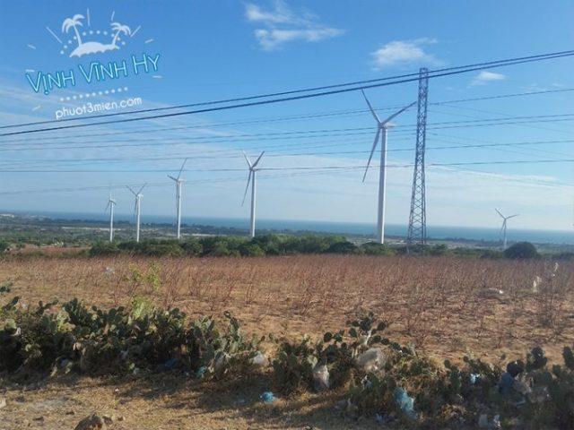 Cánh đồng điện gió ở Bình Thuận