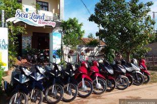 thuê xe máy tại đồng hới