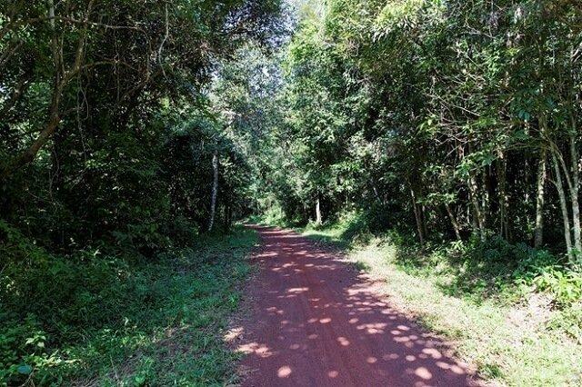 Đi-xuyên-rừng-cắm-trại-ở-hồ-Trị-An-6