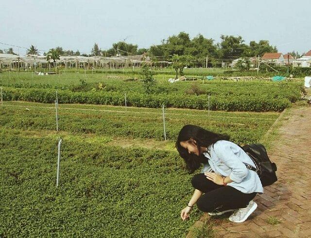 làng-rau-trà-quế