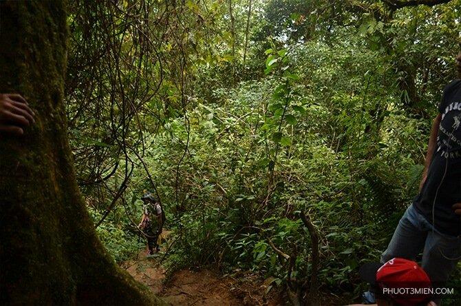 cắm-trại-trên-đỉnh-langbiang-5