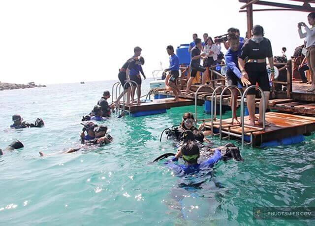 lặn ngắm san hô ở Hòn Thơm