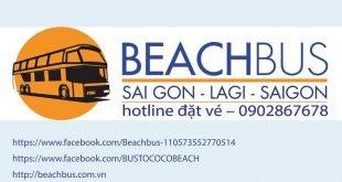 coco beach bus