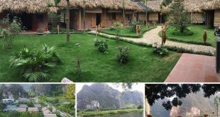 Quoc Khanh Bamboo Homestay