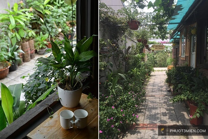 trang an pricious homestay