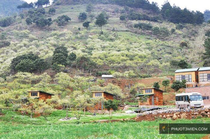 Tạo dáng thần sầu với #15 Homestay ở Mộc Châu cho nàng check in view đồi ngắm hoa 2021 - Blog Du Lịch Phượt 3 Miền