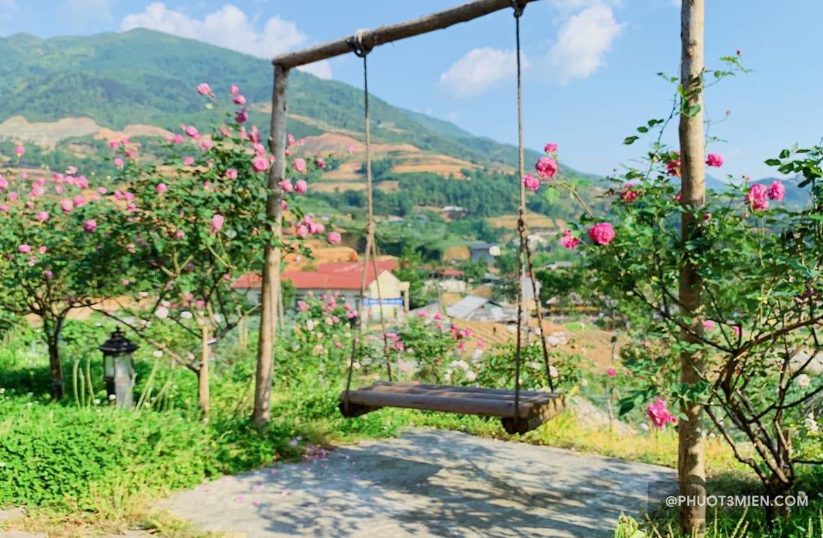 rose farm homestay
