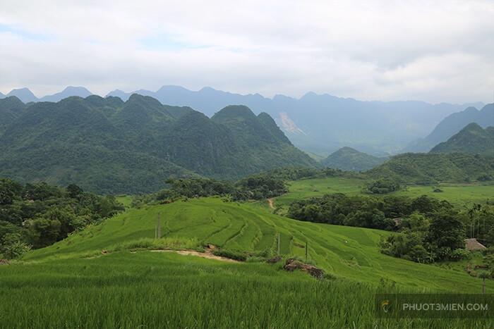 view ruộng bậc thang ở Pù Luông Retreat