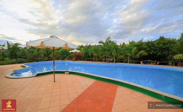 con gà vàng resort ở Phan Rang