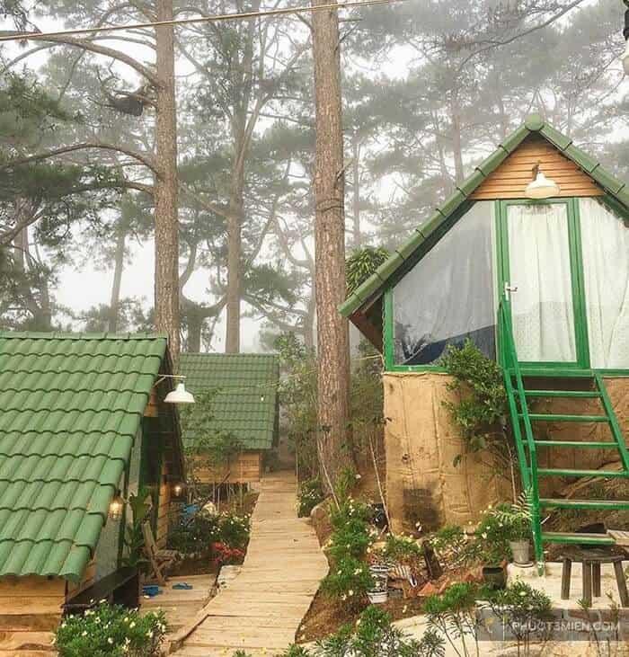 HomeFarm Homestay ẩn mình trong rừng thông Đà Lạt.