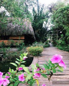 Cánh Đồng Hoa - Springfield Cottage