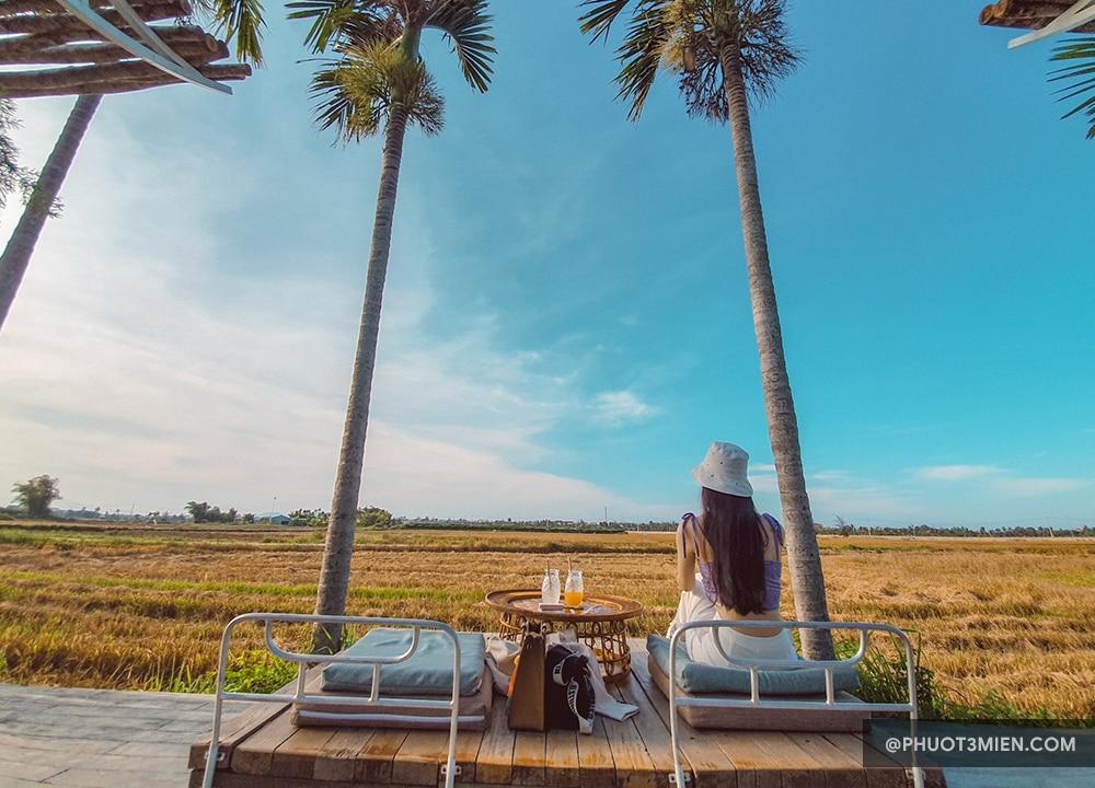 quán cefe giữa ruộng lúa