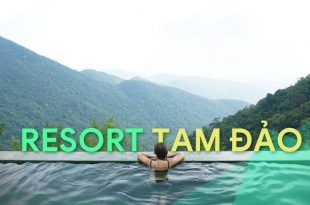 resort tam đảo