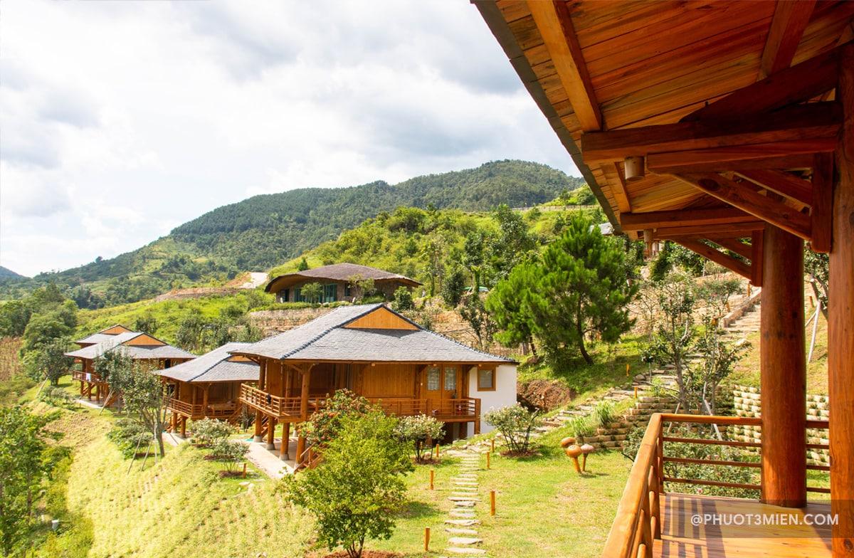 deluxe suite bungalow