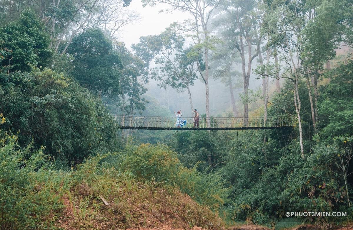cây cầu giăng đẹp như tranh