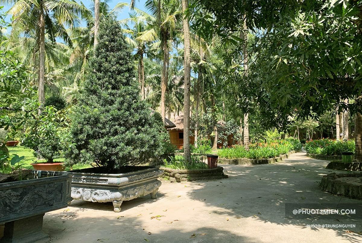 cây xanh được trồng khắp nơi