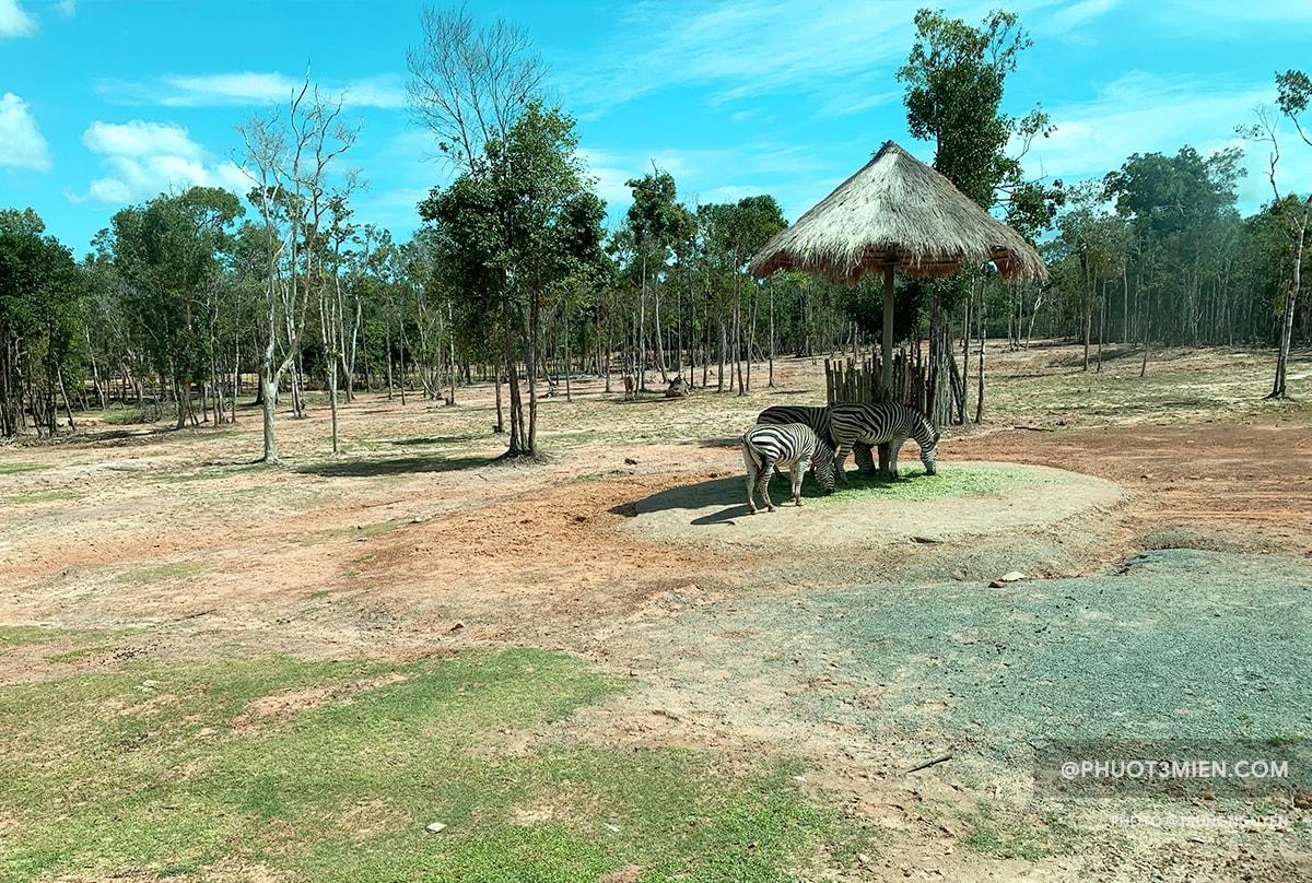 khu vườn thú hoang dã