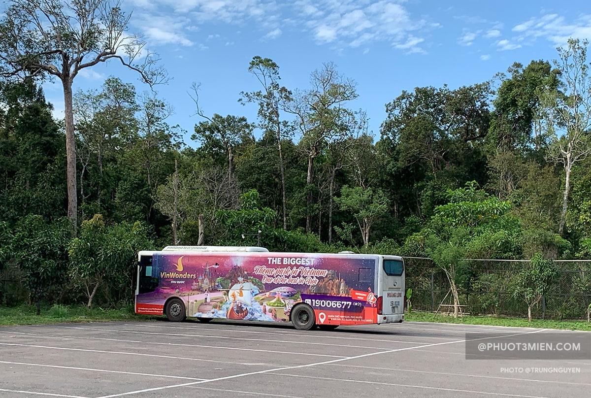 xe bus đi safari phú quốc