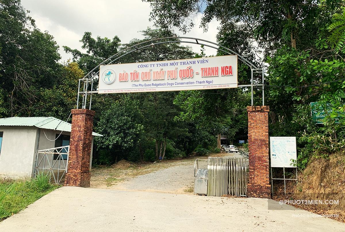 trại chó Thanh Nga - Trung tâm bảo tồn chó Phú Quốc