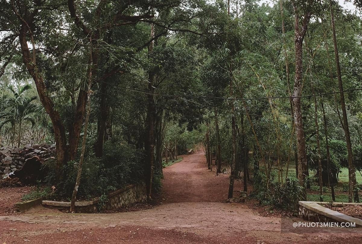 đường vào chùa từ hiếu