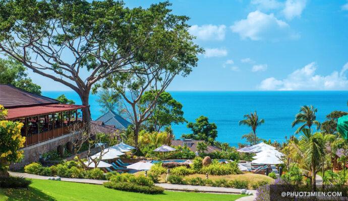 Camia Resort