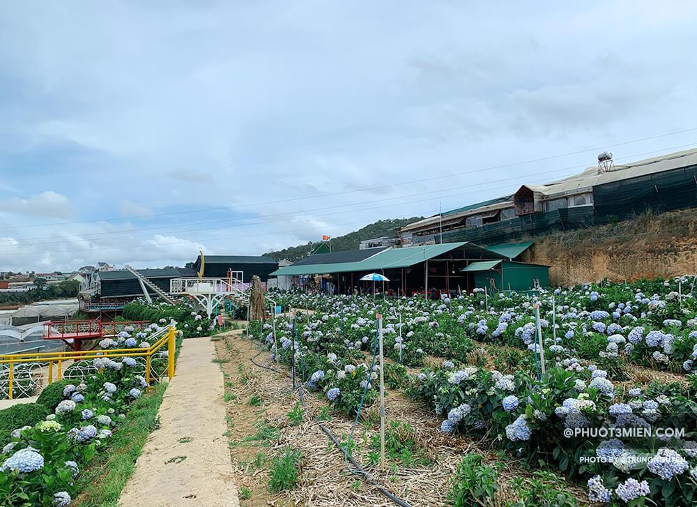 Tầng 1 của Vườn Hoa