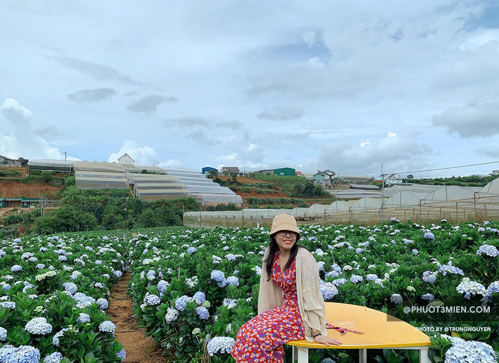 Chụp hình sống ảo ở Vườn Hoa